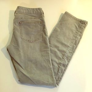 Anthropology Pilcro and the Letterpress PANTS 28